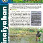 BK Golden Rice Issue